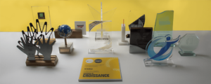 Okeenea trophies accessibility market leader
